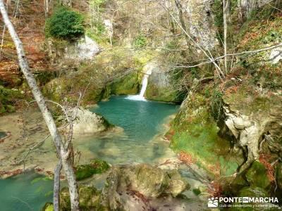 Parques Naturales Urbasa-Andía y Aralar - Nacedero del Urederra; senderismo madrid rutas